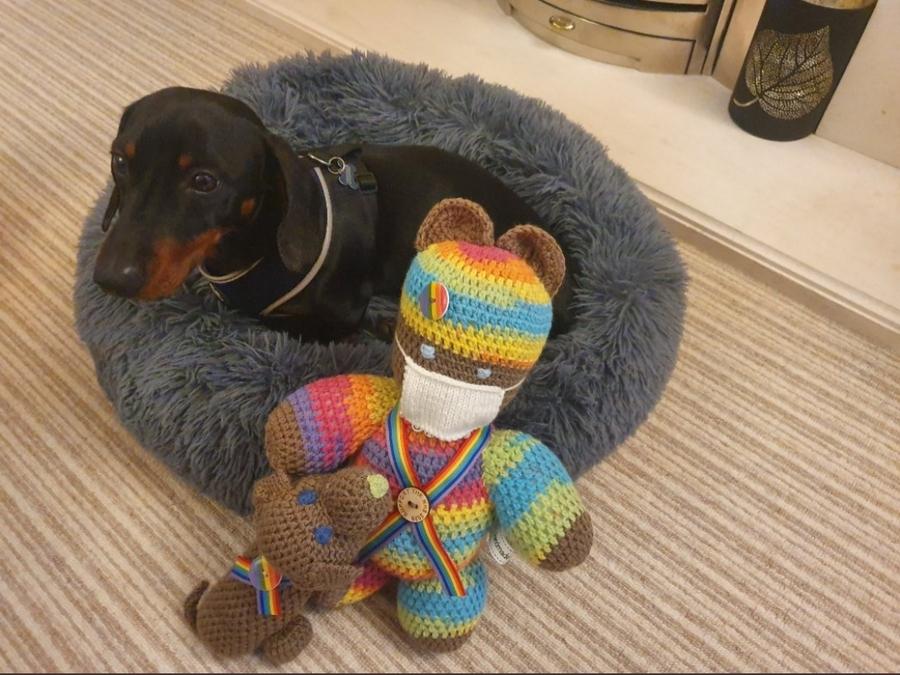 Dog and bear.jpg