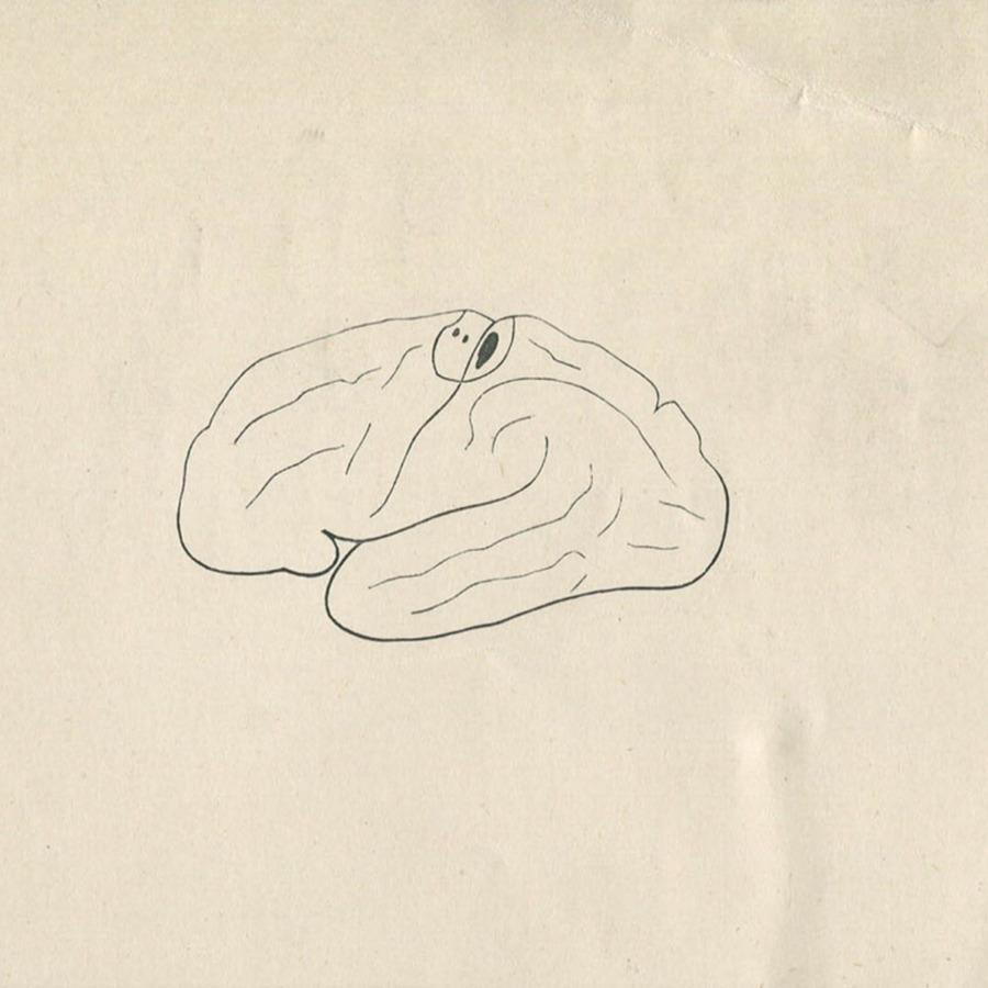 1-20-2-10-52_brain.jpg