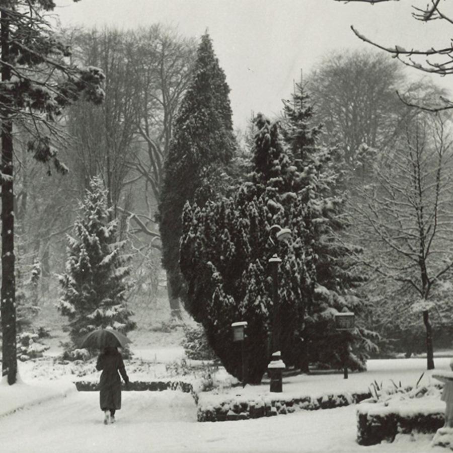 52-19-5-80_winter.jpg