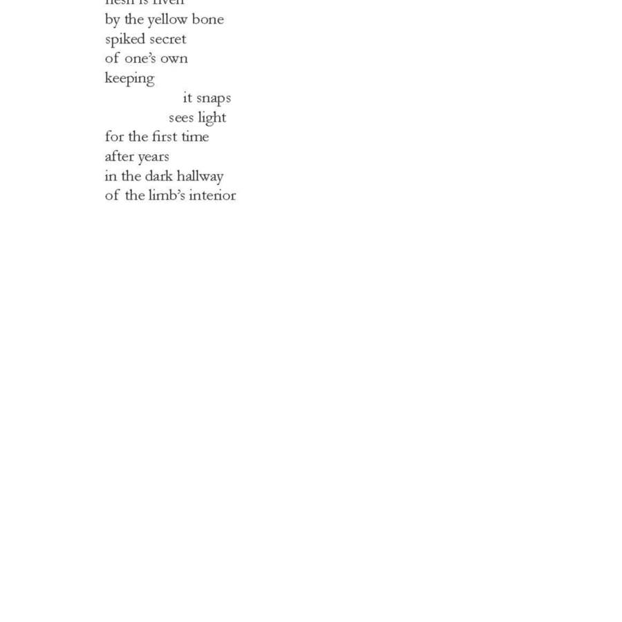 AiR_Poetry_Booklet_A5_WEB_Page_12.jpg